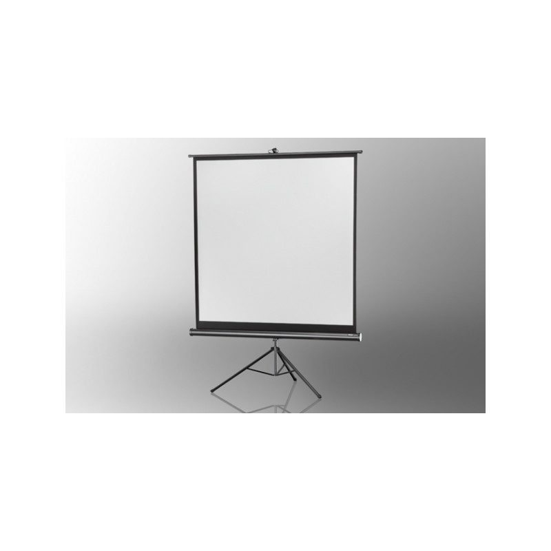 Projection screen on foot ceiling Economy 133 x 133 cm