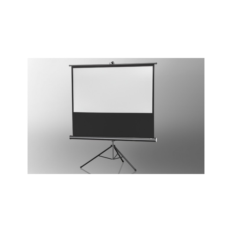 Projection screen on foot ceiling Economy 244 x 138 cm