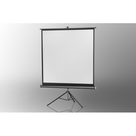 Projection screen on foot ceiling Economy 244 x 244 cm