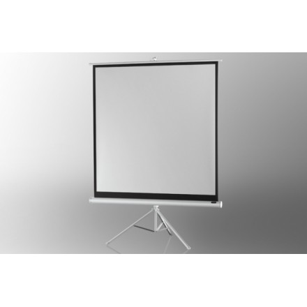 Projection screen on foot ceiling Economy 244 x 244 cm - White Edition