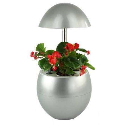 Gärtner der Hydrokultur für automatische indoor Kultur APFELFRUCHT (klein, Silber)