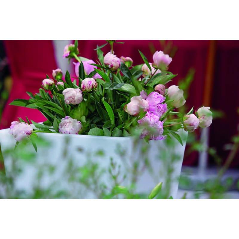 Pot ou vase lumineux rectangulaire KIWI intérieur extérieur (blanc, H 60 cm) - image 24519