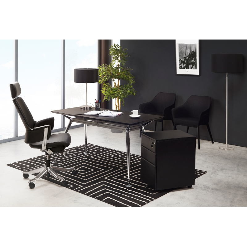 Contemporary rugs and rectangular RAFY design (160 X 230) (black, white) - image 40462