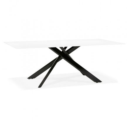 Glass and black metal design dining table (200x100 cm) WHITNEY (white)